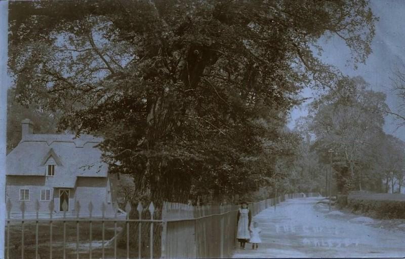 Bedford house 3